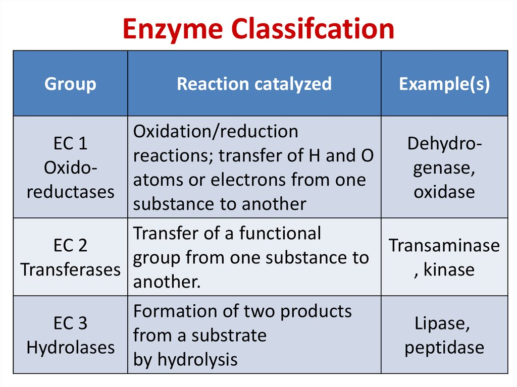 Enzyme Classifcation