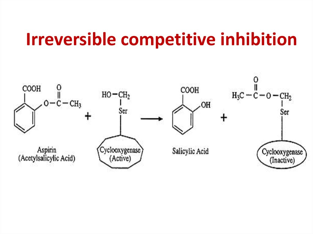 Irreversible competitive inhibition