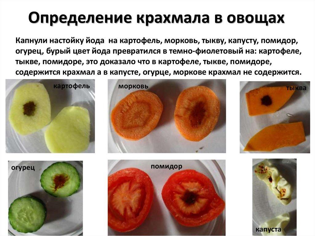 В каких продуктах содержится крахмал опыт с йодом картинки