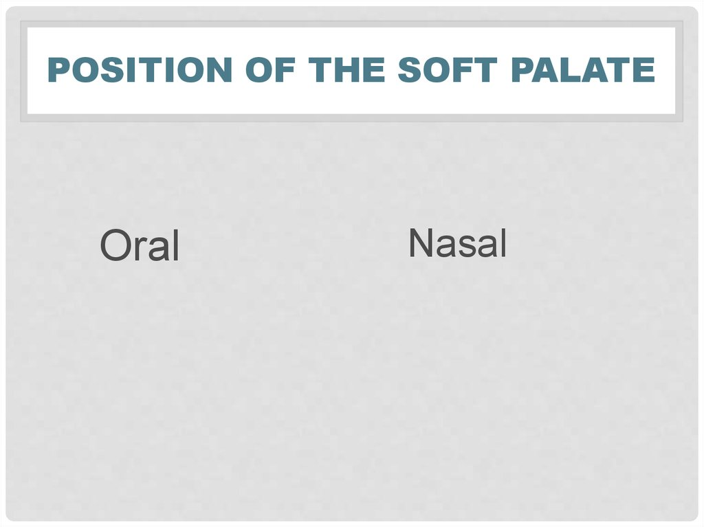 Position of the soft palate