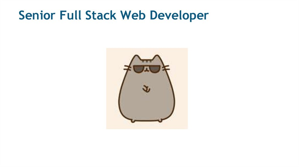 Senior Full Stack Web Developer