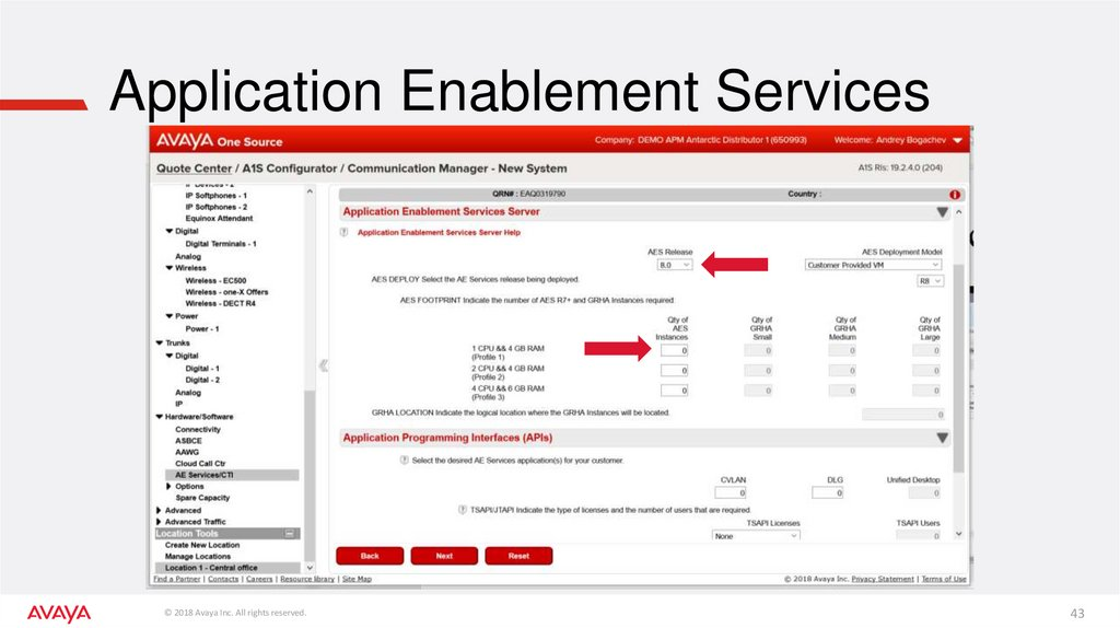 Application Enablement Services