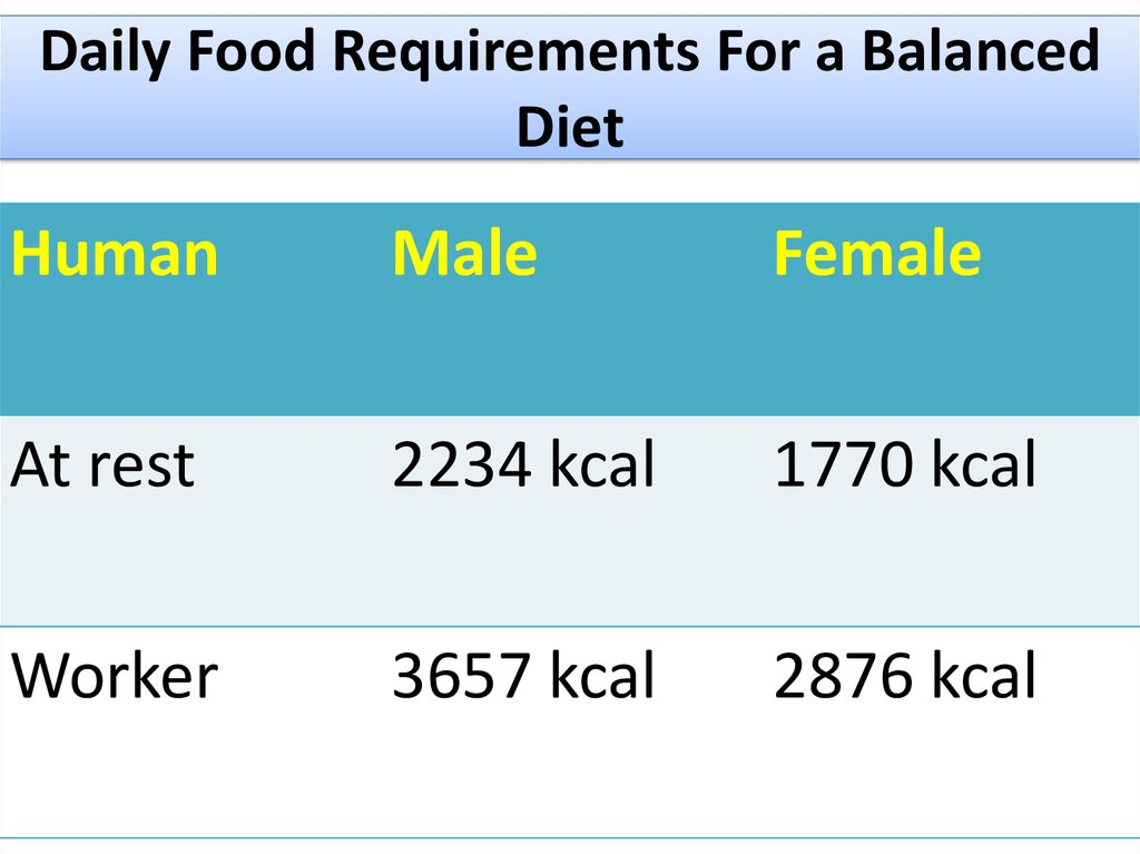 Daily Food Requirements For a Balanced Diet