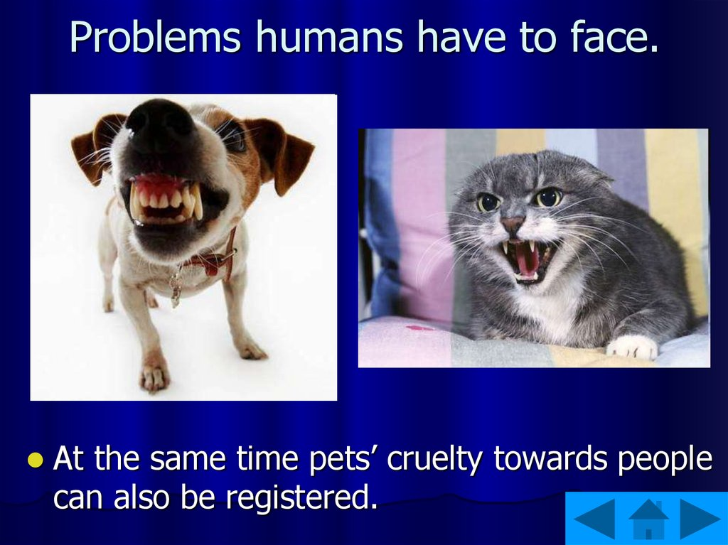 Problems humans have to face.