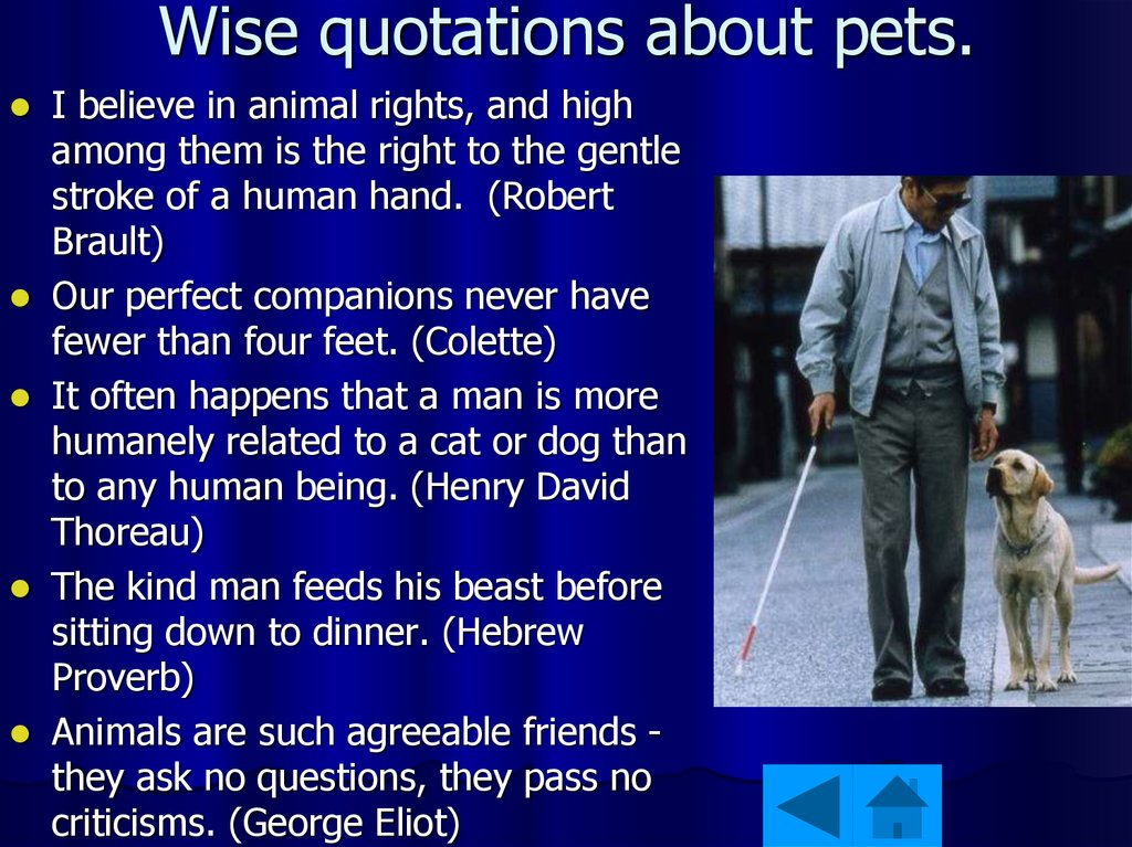 Wise quotations about pets.
