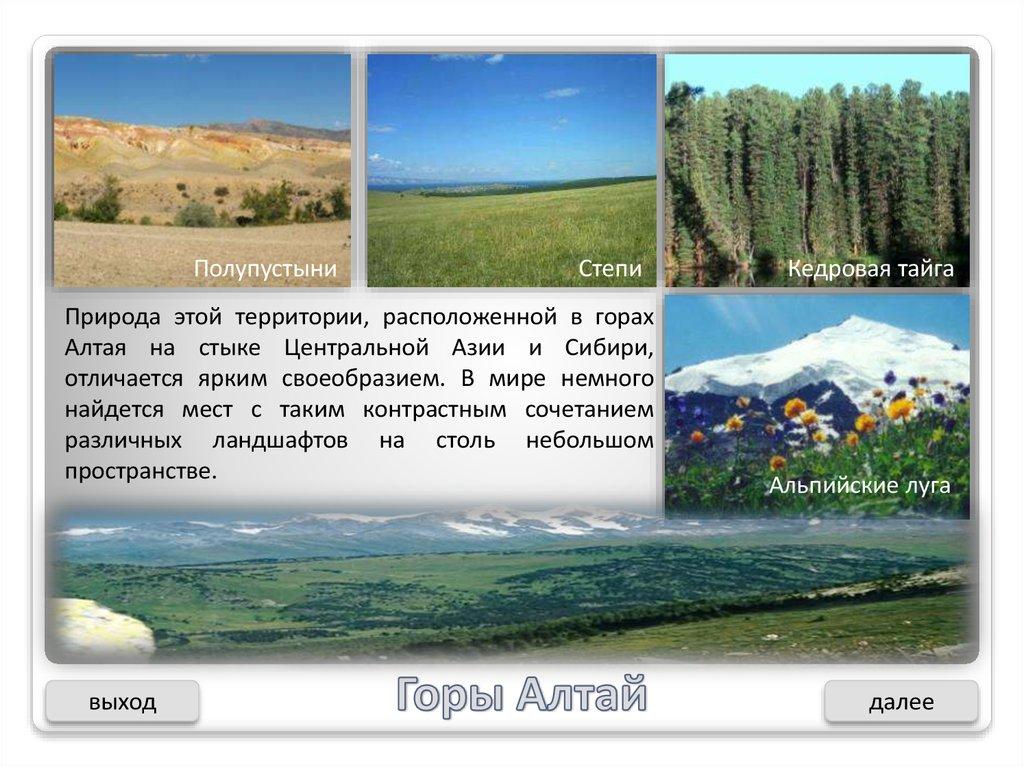 большие площади в восточной сибири занимают