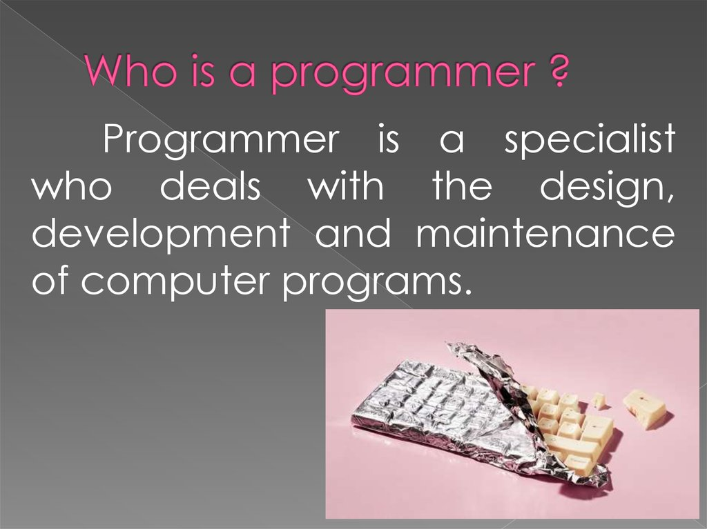 Who is a programmer ?