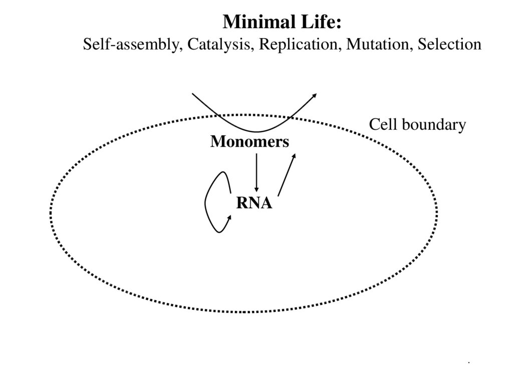 Minimal Life: Self-assembly, Catalysis, Replication, Mutation, Selection