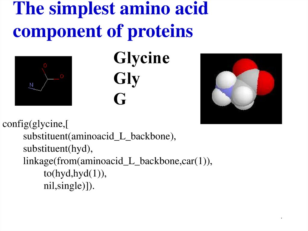 The simplest amino acid component of proteins