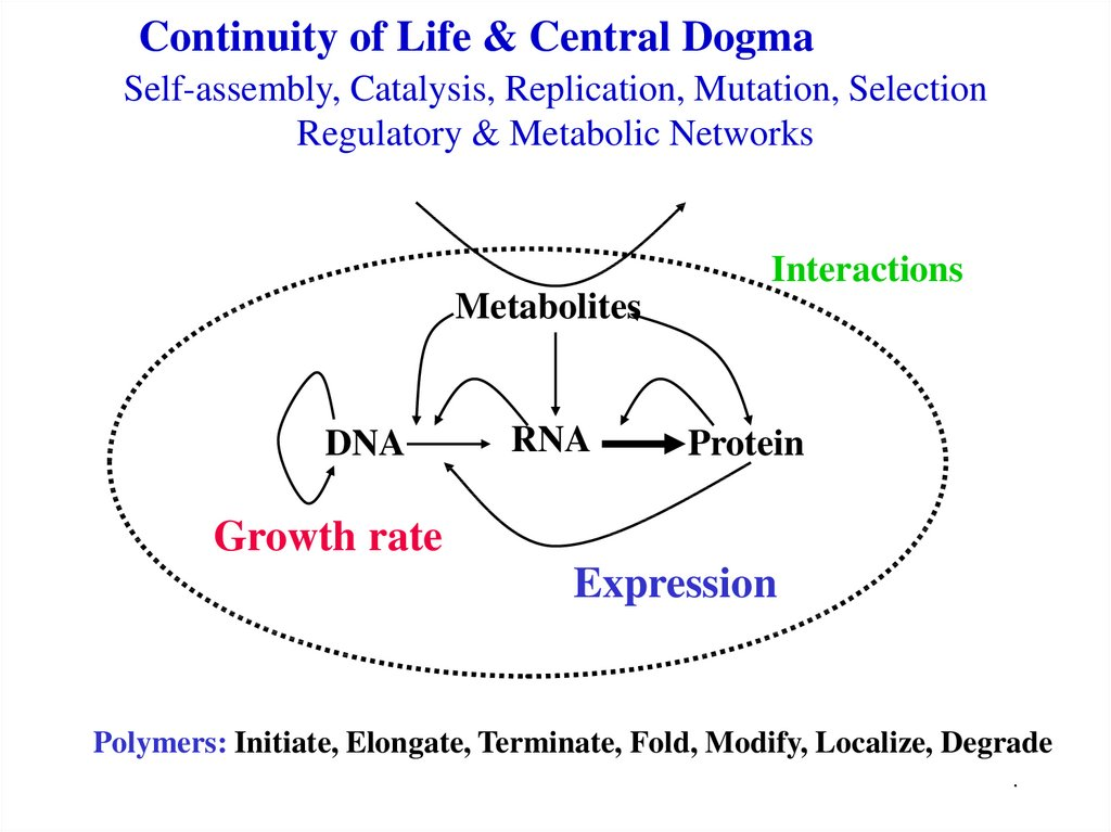 Continuity of Life & Central Dogma