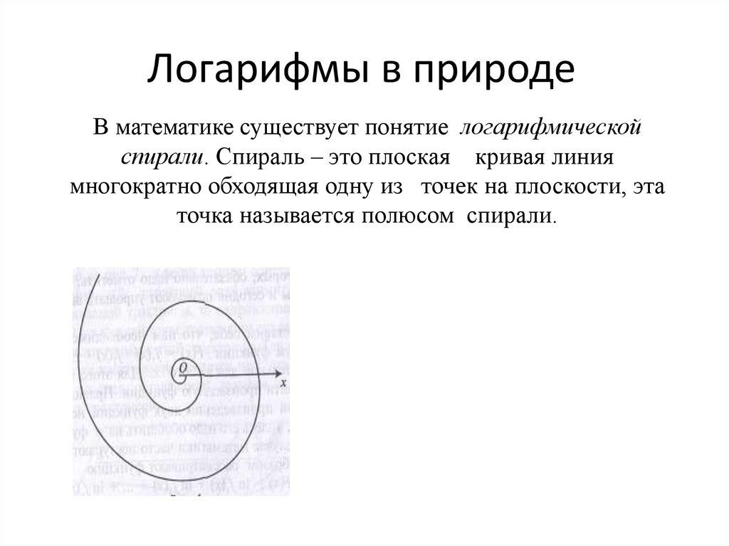 картинки логарифмы в природе сочетании коричневым