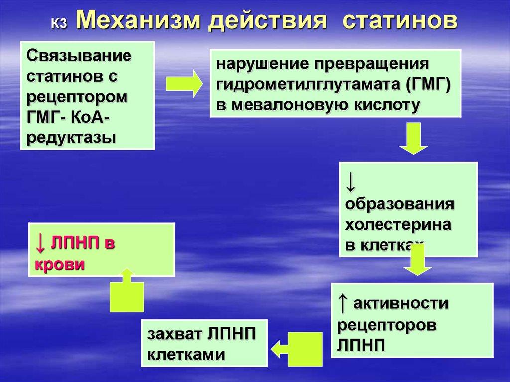 ондувилла механизм действия статинов картинки добыча железной
