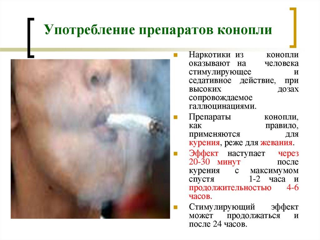 Последствия употребления марихуану отличия конопли сорной и посевной