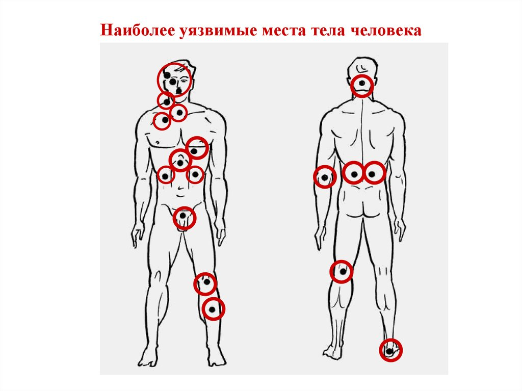 Картинки уязвимые точки на теле человека