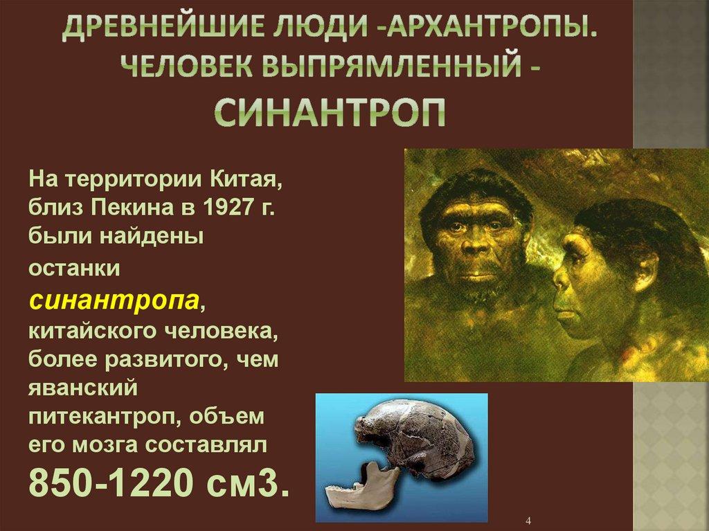 архантропы в картинках сообщили городском управлении