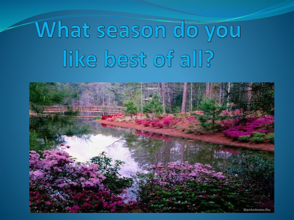 What season do you like best of all?