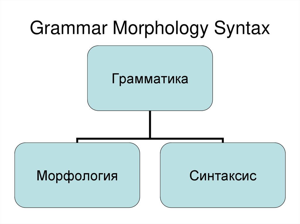 Grammar Morphology Syntax