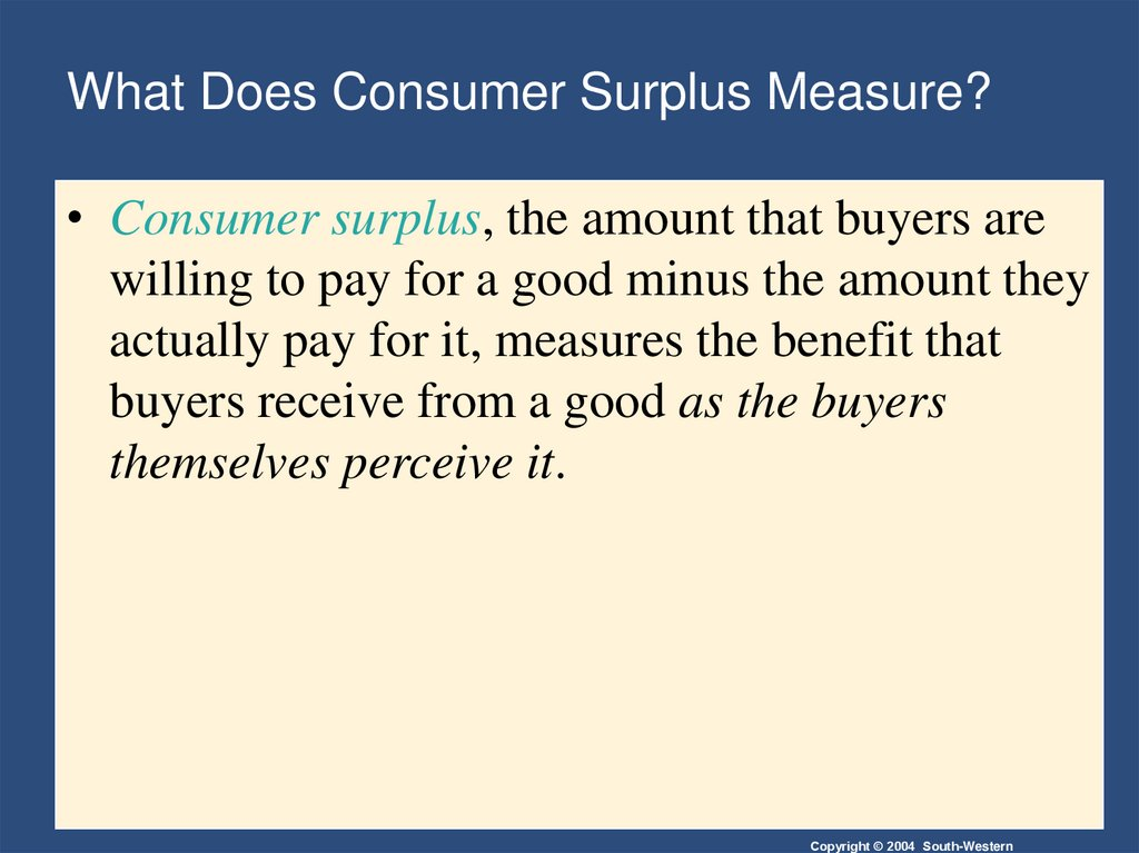 What Does Consumer Surplus Measure?