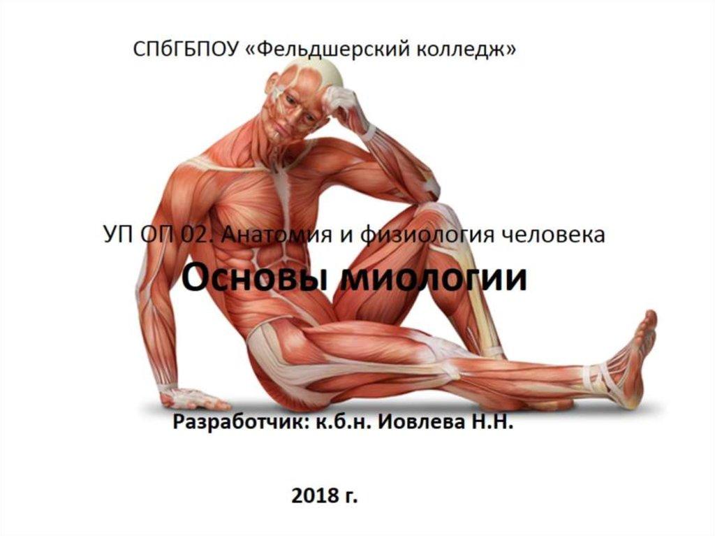 ebook Физическое воспитание в образовательном пространстве дошкольных учреждений (160,00 руб.)