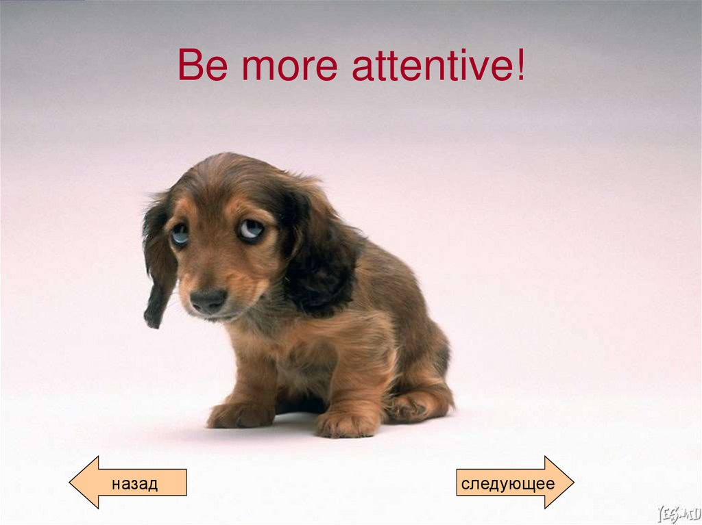 Be more attentive!