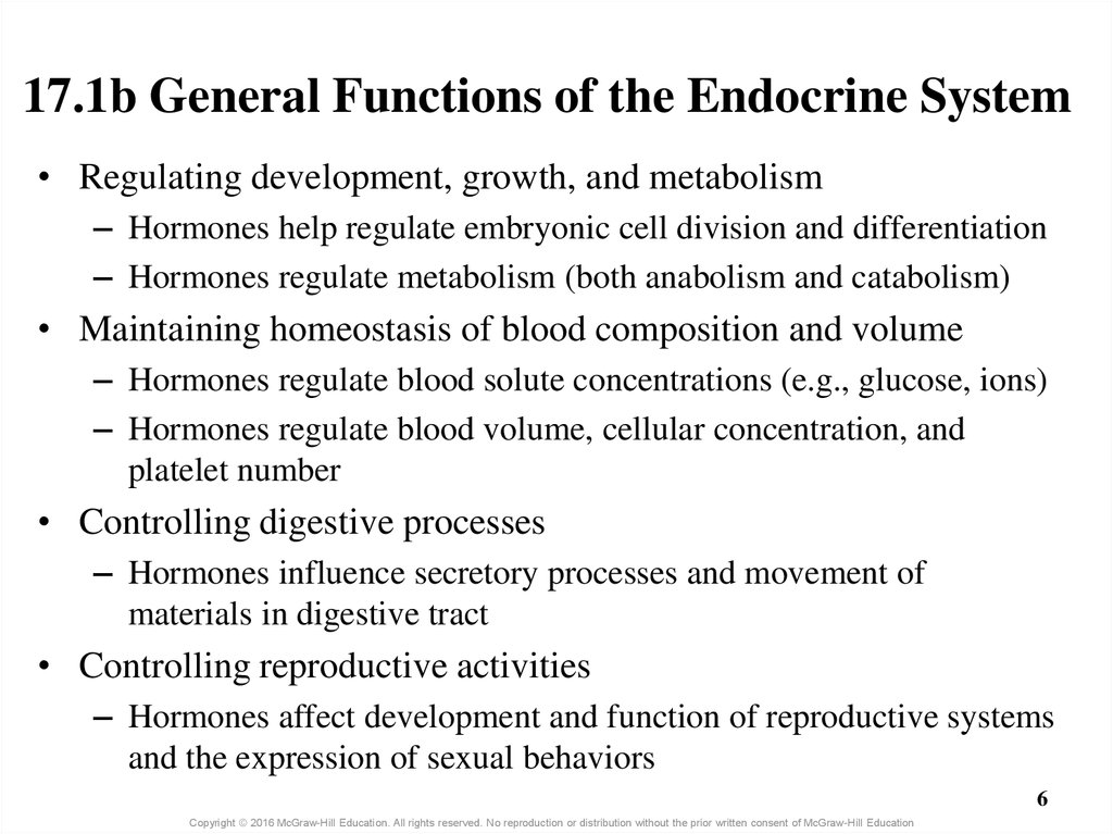 17.1b General Functions of the Endocrine System