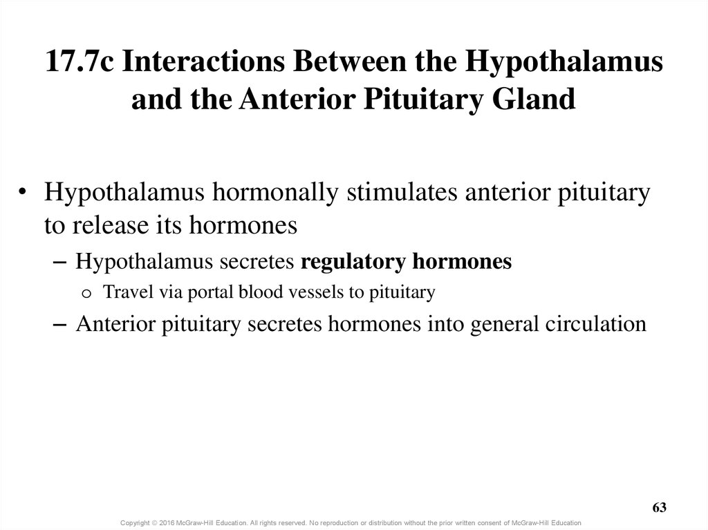 17.7c Interactions Between the Hypothalamus and the Anterior Pituitary Gland