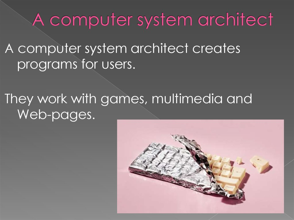 A computer system architect