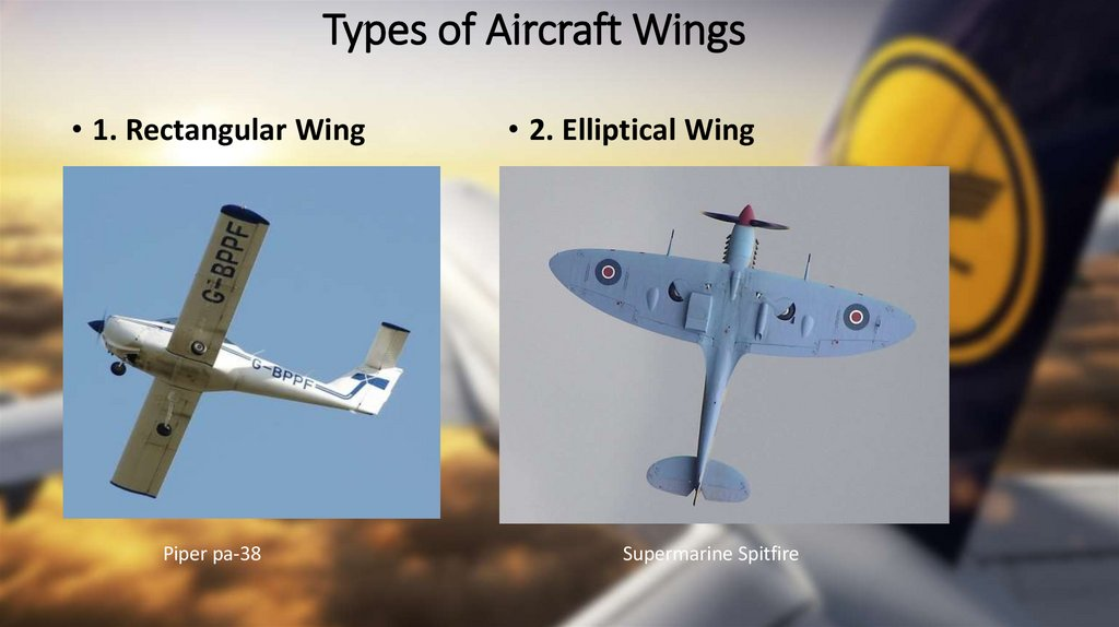 Types of Aircraft Wings