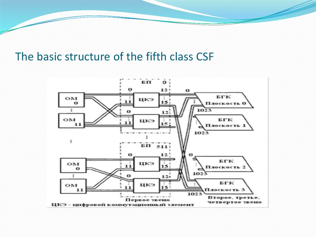 The basic structure of the fifth class CSF