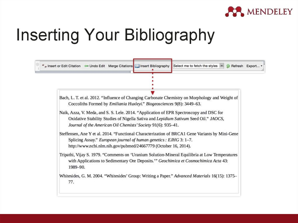 Inserting Your Bibliography
