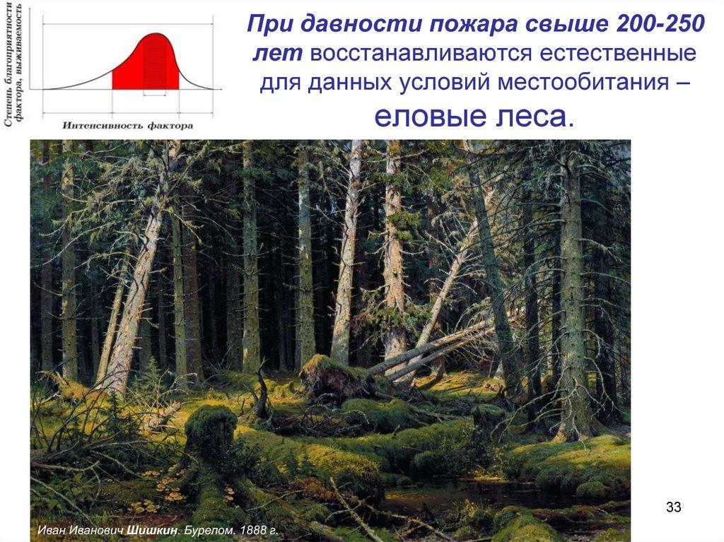 экологические ниши леса